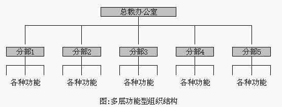 组织结构模型