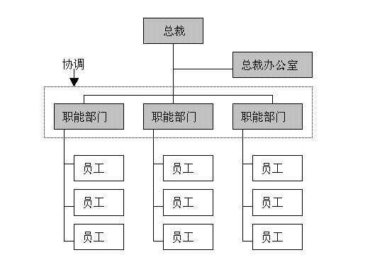 图: 职能型组织结构图    在职能型组织里开展项目工作,存在非